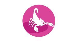 Škorpijon: Mini horoskop 2020 za vsak letni čas posebej