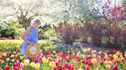 Sporočilo za današnji dan: Zasadi svoj vrt