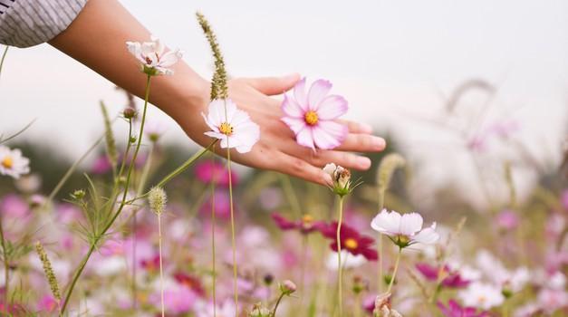 Od zunaj lahko dobimo nasvete in podporo, a glavno orodje je v naših rokah (foto: unsplash)