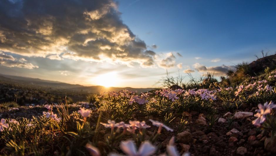 Sporočilo za današnji dan: Opazujte lepote Zemlje (foto: Unsplash.com)