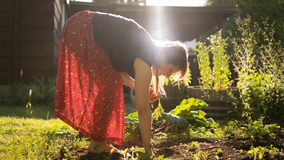 Delo z zemljo je zdravilno (foto: profimedia)