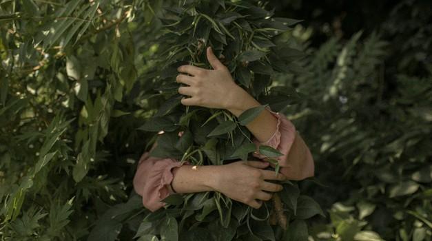 Zemlja si želi, da prevzamemo odgovornost za svoja dejanja (foto: Unsplash.com)