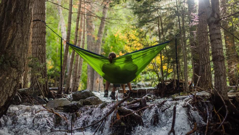 Natečaj: izbiramo 4 najlepše misli o naravi (foto: unsplash)