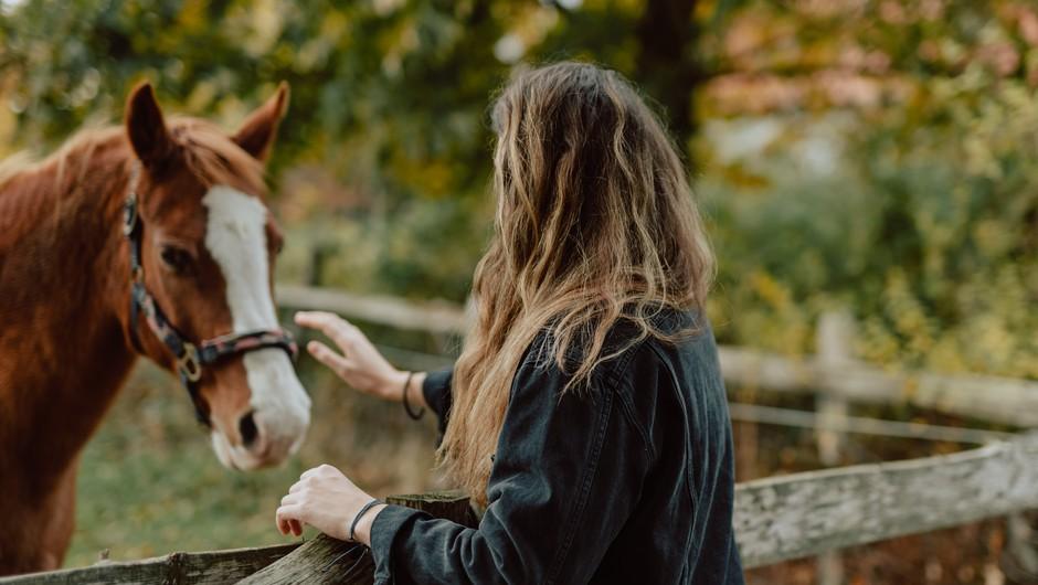 Numeroskop od 7. do 13. 10. 2019: Ste sami sebi prijatelj? (foto: unsplash)