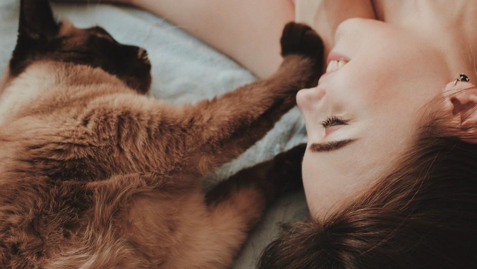 Z mačkami in psi smo globoko duhovno povezani (foto: unsplash)