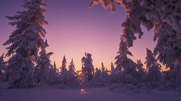Energije prazničnega decembra (foto: profimedia)
