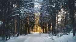 Glasbeno-meditacijski večeri v decembru (Ptuj in Novo mesto)
