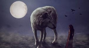 Katera je vaša duhovna žival glede na astrološko znamenje