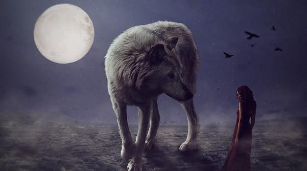 Katera je vaša duhovna žival glede na astrološko znamenje (foto: pixabay)