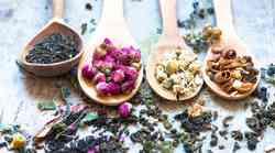 Preprosto & učinkovito: Očistite telo z rastlinami!
