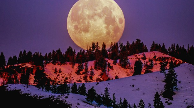 Super polna luna v devici (9. marec): SPREJMITE ŽIVLJENJE (foto: Pexels)
