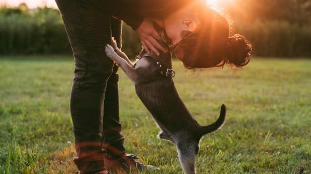 Ni težave, ki je dovolj ljubezni ne bi moglo premagati (foto: pexels)