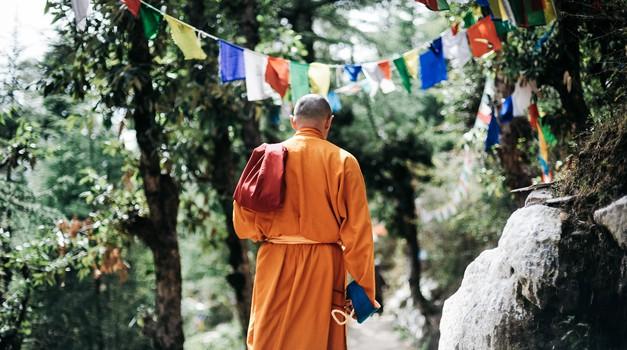 Budisti učijo, da ima umik v samoto številne pozitivne učinke (foto: pexels)