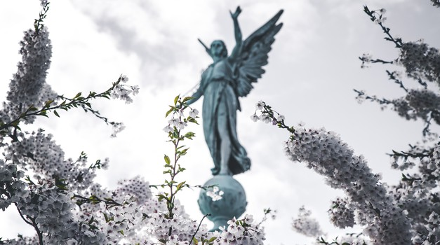 Kako vam v času sprememb lahko pomagajo angeli? (foto: unsplash)
