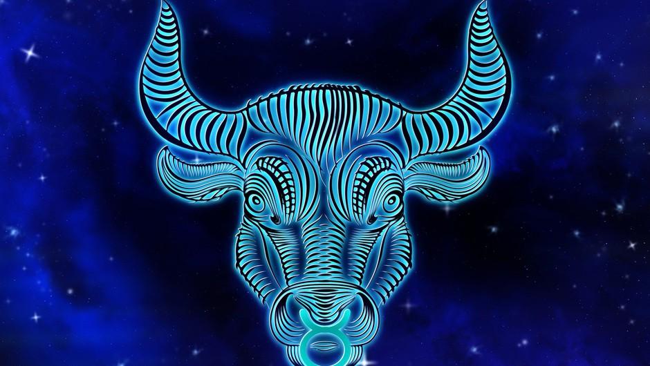 Prihaja MLAJ v BIKU: Naj vas ne bo strah teme! (foto: pixabay)