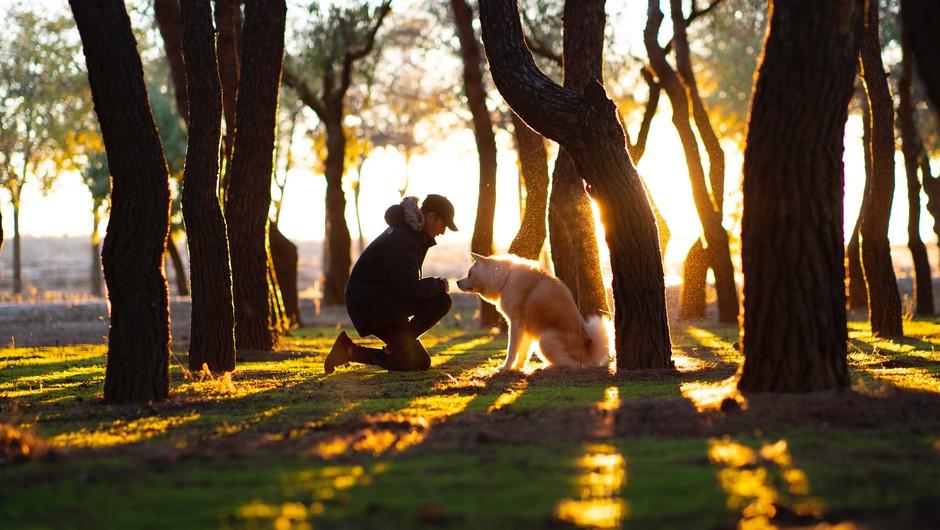 Lastniki živali živijo dlje in manj obolevajo (foto: Unsplash.com)