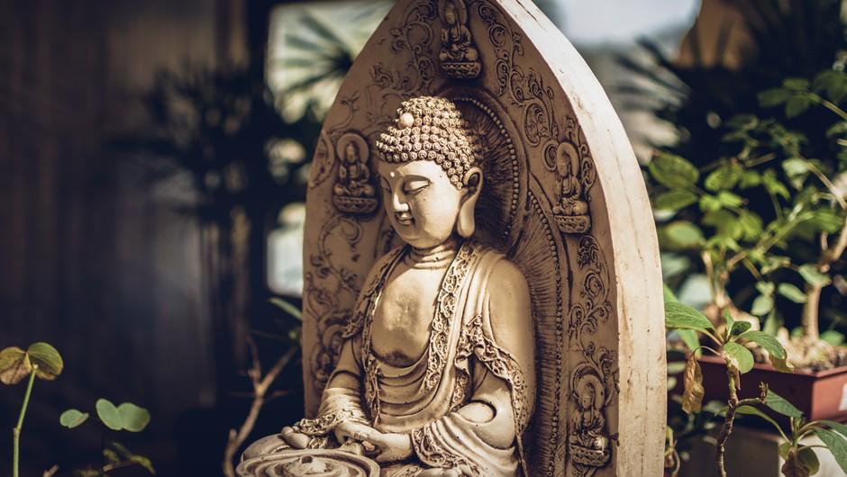 9 misli Bude: Največja modrost je videti dlje in globlje od videza (foto: Unsplash.com)