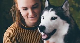 Sporočilo za današnji dan: Psi so naše ogledalo