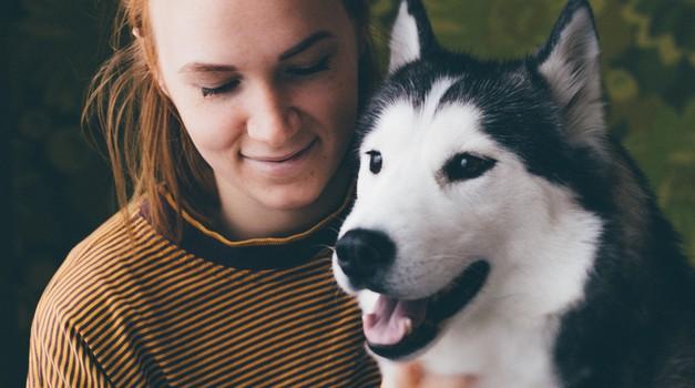 Sporočilo za današnji dan: Psi so naše ogledalo (foto: Pexels)