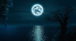 Borut Lesjak - Celjenje:Dar lune - celodnevna delavnica