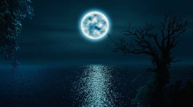 Borut Lesjak - Celjenje:Dar lune - celodnevna delavnica (foto: pixabay)