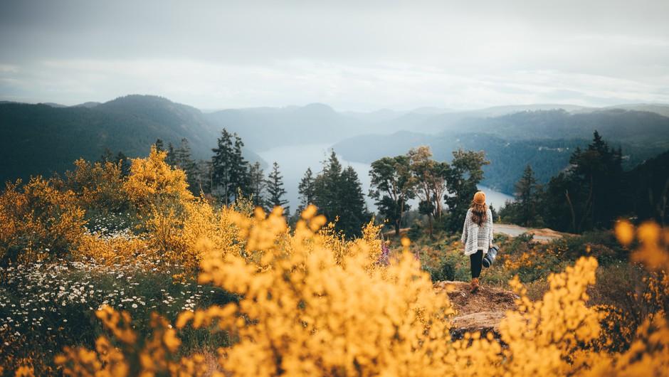 Ko ne veste, kaj storiti v življenju, pojdite v naravo (foto: pexels)