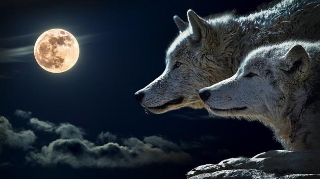 Lunin mrk prinaša največ drame tem 4 znamenjem (foto: pixabay)