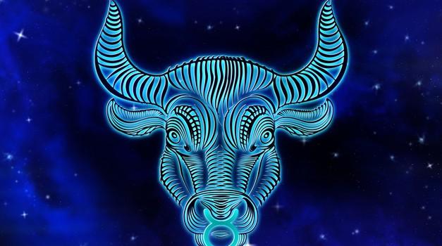 Bik: Veliki letni horoskop 2021 (foto: pixabay)