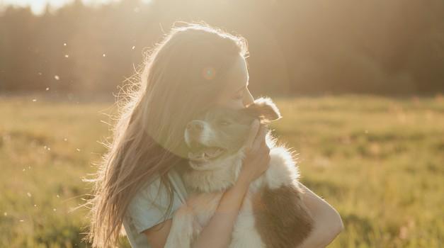 Z mačkami in psi smo globoko duhovno povezani (foto: pexels)