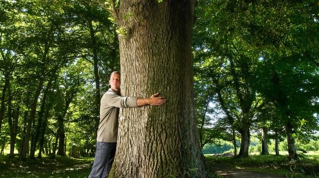 """Samopomoč za empate: """"Objemite drevo!"""""""