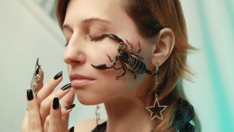 Škorpijoni so izjemno silovite osebe, polne energije in nebrzdane strasti (foto: pixabay)