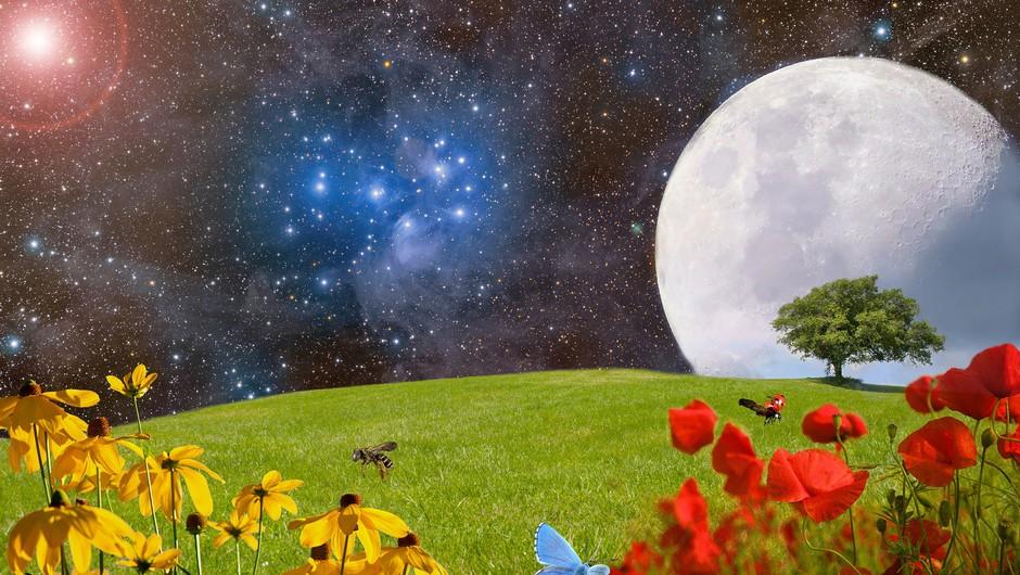 Tokratna polna luna lahko deluje tudi pomirjevalno! (foto: pixabay)