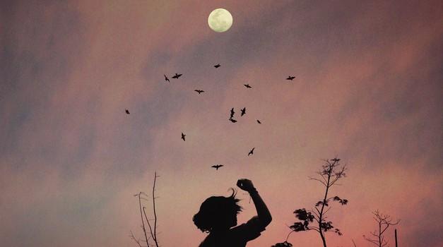 Gregorjevo: Dekleta ozrite se 12. marca v nebo! (foto: pexels)