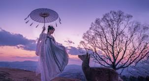 Katera je vaša sorodna duša po kitajskem horoskopu?