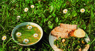 DIVJA HRANA na krožniku: recepti Daria Cortese