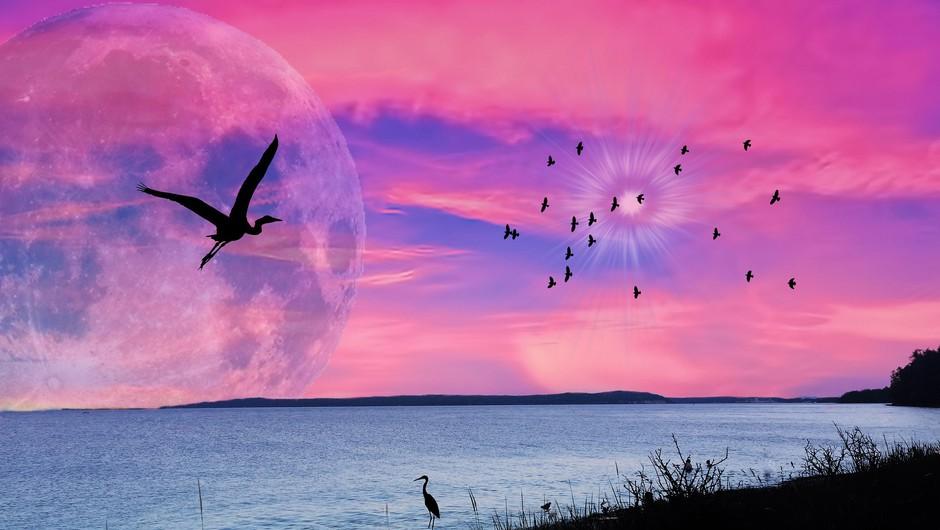 Super polna luna v škorpijonu - močan energijski portal (foto: pixabay)