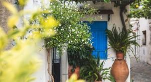 10 čudovitih zunanjih rastlin, s katerimi si polepšajte balkon, teraso ali vhod v stanovanje