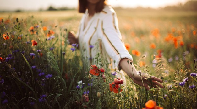 Paulo Coelho: 25 napotkov za srečo (foto: shutterstock)