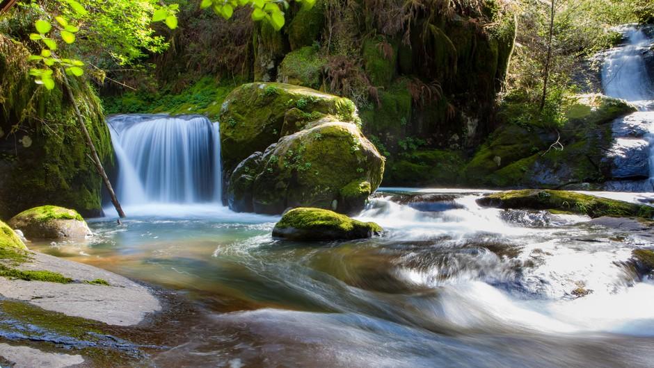Najbolj zdravilni izviri po Sloveniji: Kam po vodo? (foto: pexels)