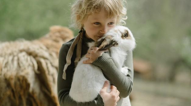 Karel Gržan: Le za sebičneža na tem svetu ni rešitve (foto: pexels)