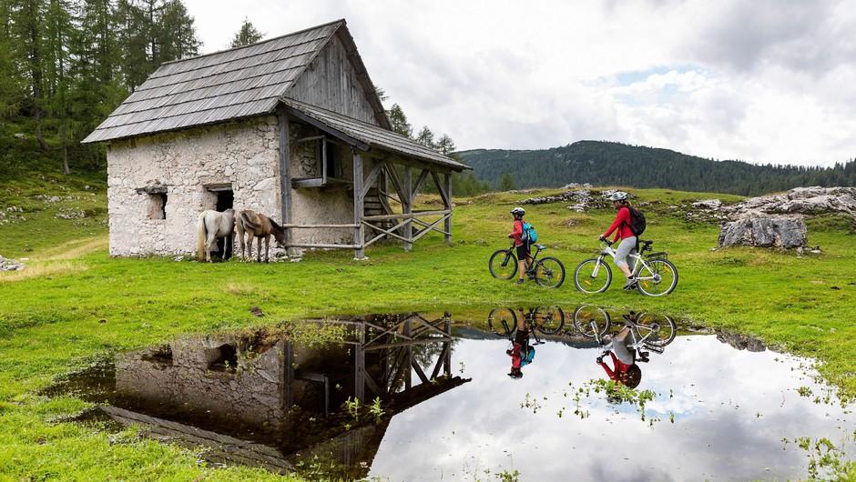 Ideje za izlete: TOP 9 kolesarskih poti po Sloveniji (foto: profimedia)