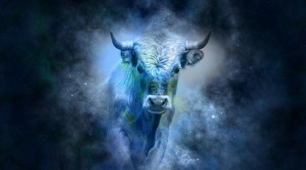 BIK: Rojeni v znamenju bika so zaradi svoje zanesljivosti odlični prijatelji (foto: pixabay)