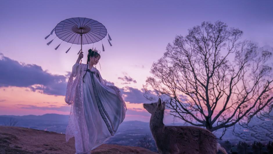 Kitajski horoskop od 17. do 23. maja (foto: pixabay)