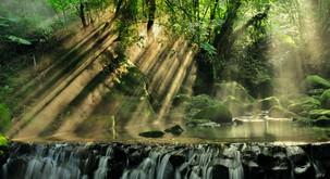 Sporočilo za današnji dan: Izražajte čustva, naj tečejo svobodno kot reka