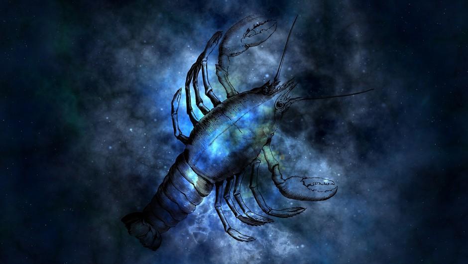 """Je mlaj v raku res """"nora luna""""? (foto: pixabay)"""