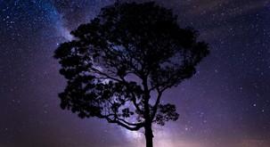 7 univerzalnih zakonov vesolja