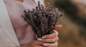 Šopek sivke privlači ljubezen in spokojnost