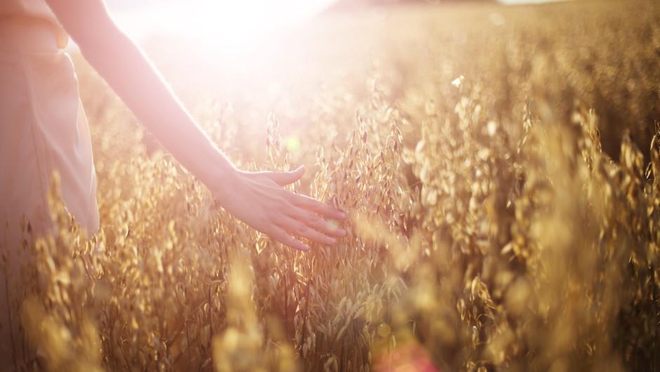 Vsaka pot se začne s prvim korakom in le pot, ki se nikoli ne začne, je nemogoča. (foto: shutterstock)