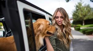 Kako psi ločijo, če ste nekaj naredili namenoma ali pa po nesreči