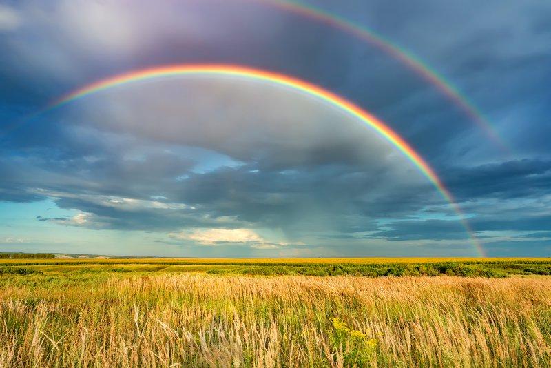 Upanje je zmožnost, da vidimo svetlobo kljub vsej temi. Toda ni je mavrice brez oblakov in dežja.